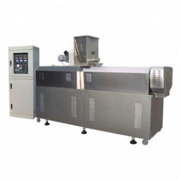 Bubble Ultrasonic Cleaning Machine Vegetable and Fruit Washer (TS-X200)