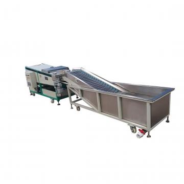 High Efficiency Leaf Vegetable and Fruit Bubble Washer Machine Cleaning Machine